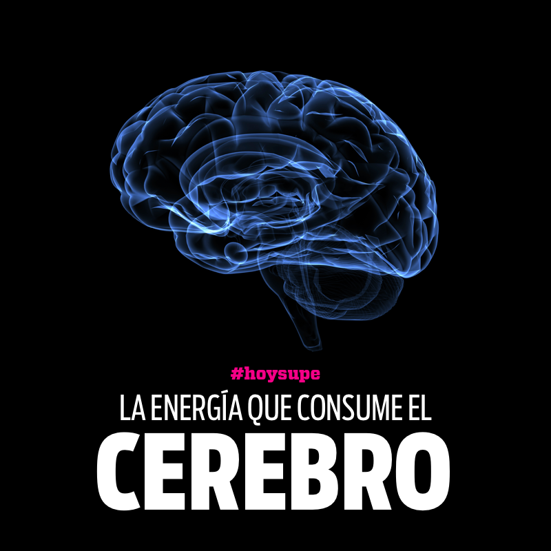 La energìa que consume nuestro cerebro